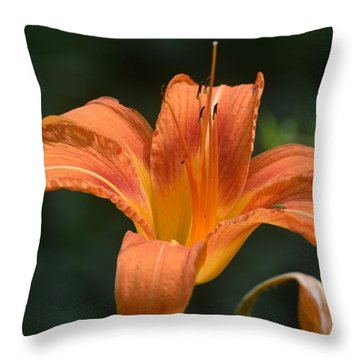 Summer Bloom-3 Throw Pillow