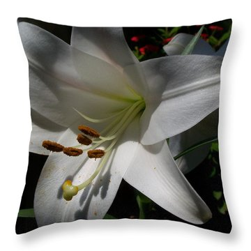 Summer Bloom Lily Throw Pillow by Jake Hartz