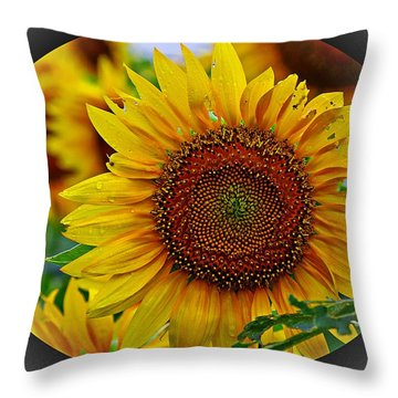 Summer Breaks  Throw Pillow