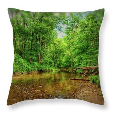 Summer Breeze II Throw Pillow