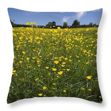 Summer Buttercups Throw Pillow by Meirion Matthias