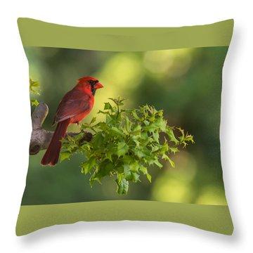 Summer Cardinal New Jersey Throw Pillow