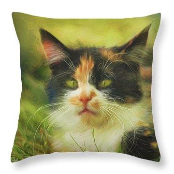 Throw Pillow featuring the photograph Summer Cat by Jutta Maria Pusl