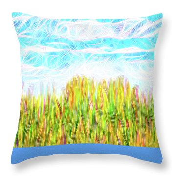 Summer Clouds Streaming Throw Pillow by Joel Bruce Wallach