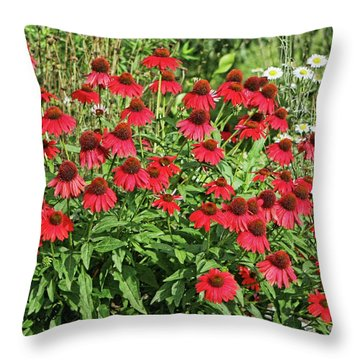 Summer Color Throw Pillow by Denise Romano