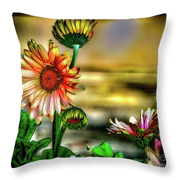 Throw Pillow featuring the photograph Summer Daisy by William Norton