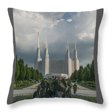 Summer Day At The Lds Throw Pillow