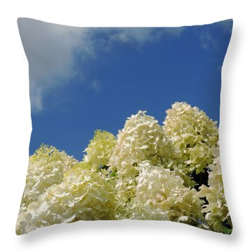 Summer Day Throw Pillow by Teresa Schomig