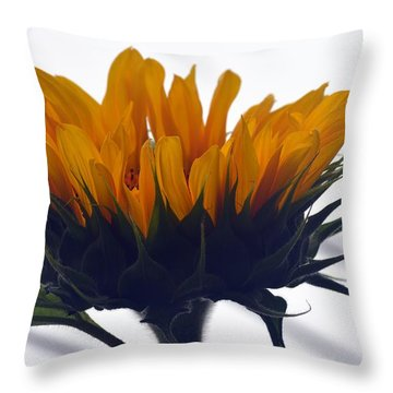 Throw Pillow featuring the photograph Summer Delight by Richard Ricci
