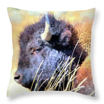 Summer Dozing - Buffalo Throw Pillow