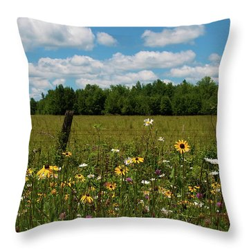 Summer Dreams... Throw Pillow by Nina Stavlund