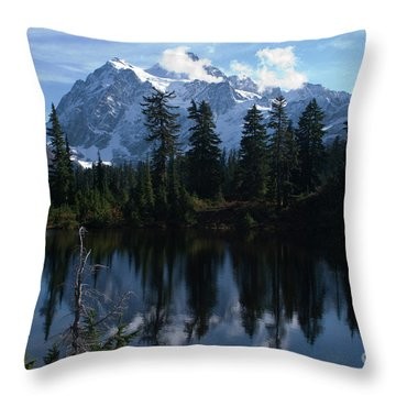 Throw Pillow featuring the photograph Summer Dreams by Rod Wiens
