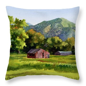 Throw Pillow featuring the painting Summer Evening by Anne Gifford