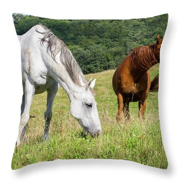 Summer Evening For Horses Throw Pillow