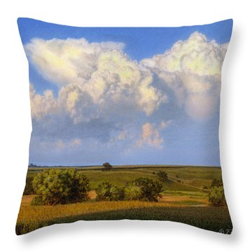 Summer Evening Formations Throw Pillow