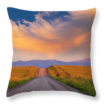 Summer Fantastic Throw Pillow