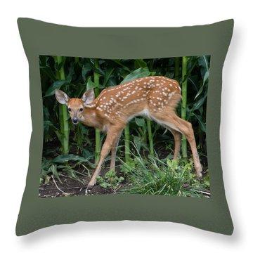 Summer Fawn Throw Pillow