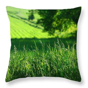 Summer Fields Of Green Throw Pillow