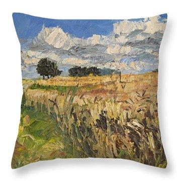 Summer Fields Plein Air Landscape Throw Pillow by Martin Stankewitz