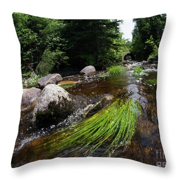 Summer Flow Of Water Near Rangeley Maine  -63322 Throw Pillow