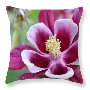 Summer Flower-2 Throw Pillow
