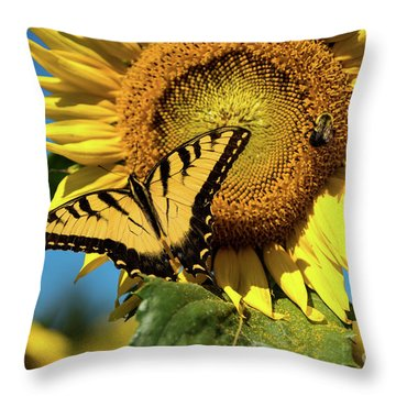 Summer Friends Throw Pillow