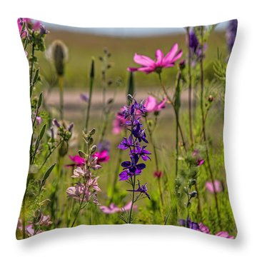 Summer Garden Throw Pillow by Alana Thrower