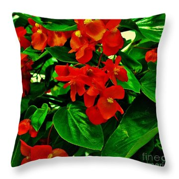 Summer Geranium Throw Pillow