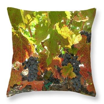 Summer Grapes Throw Pillow by Bonnie Muir