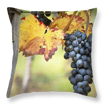 Summer Grapes Throw Pillow by Sharon Foster