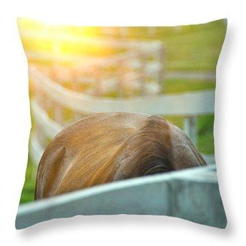 Summer Grazing  Throw Pillow