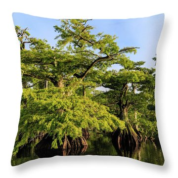 Summer Greens Throw Pillow
