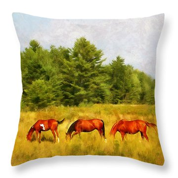 Summer Hay Burners Throw Pillow