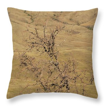 Summer Idaho Throw Pillow