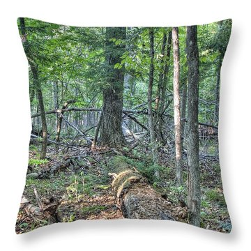 Summer In A Canadian Forest Throw Pillow