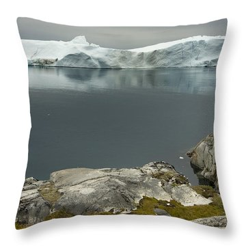 Summer In Greenland Throw Pillow by Robert Lacy