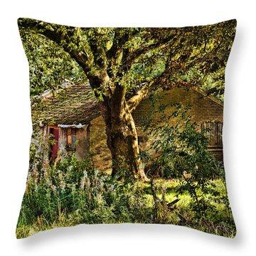 Summer In Holland-2 Throw Pillow