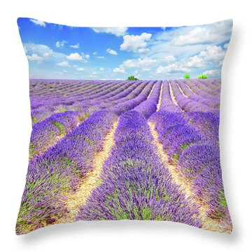 Summer In Provence Throw Pillow by Anastasy Yarmolovich