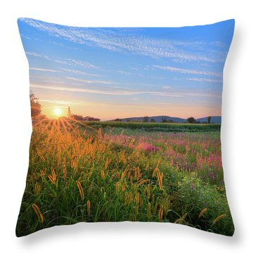 Throw Pillow featuring the photograph Summer In The Hills 2017 by Bill Wakeley