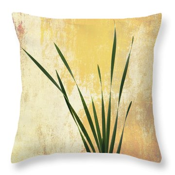 Throw Pillow featuring the photograph Summer Is Short 1 by Ari Salmela