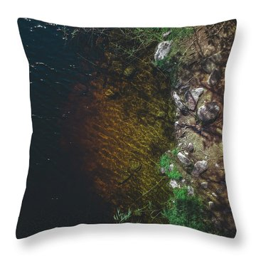 Summer Lake - Aerial Photography Throw Pillow