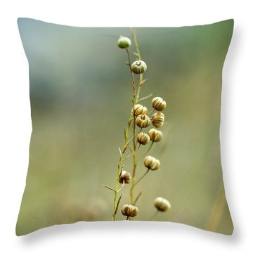 Pod Throw Pillows