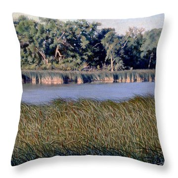 Summer Morning On The Slough Throw Pillow