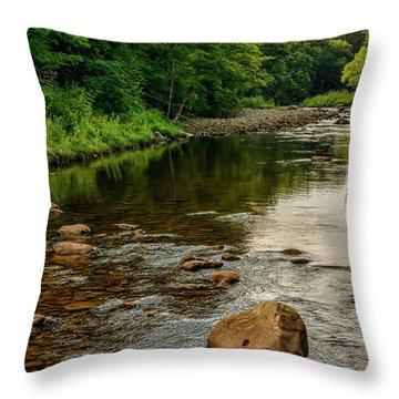Summer Morning Williams River Throw Pillow