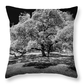 Throw Pillow featuring the photograph A Summer's Night by Darryl Dalton