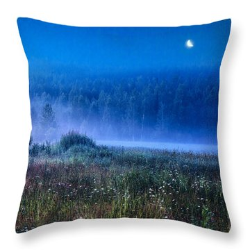 Summer Night Throw Pillow