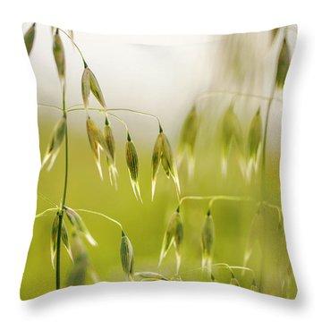 Summer Oat Throw Pillow