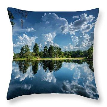 Summer Of Calm Throw Pillow