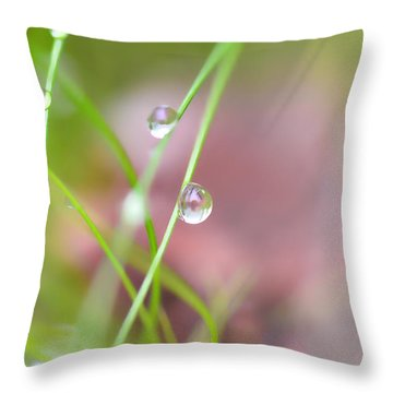 Summer Of Dreams Throw Pillow