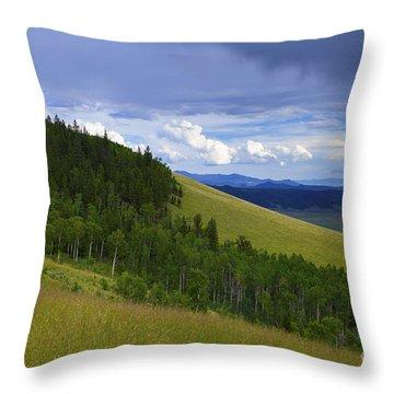Summer On Kenosha Pass Throw Pillow